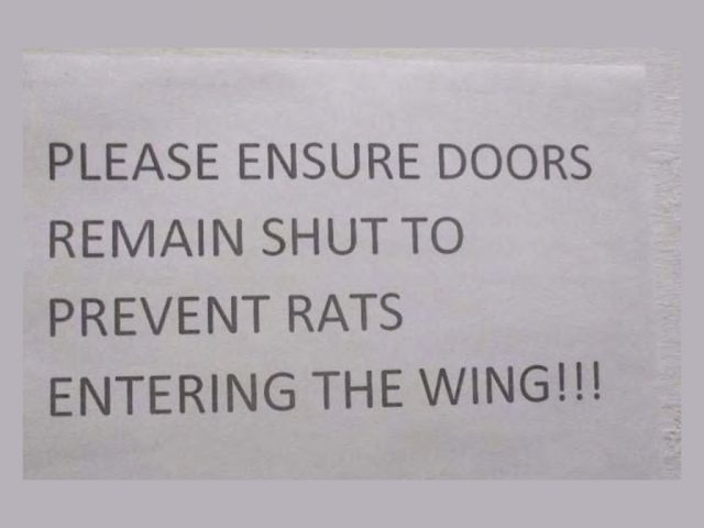 HMP Bedford: 'Rats on wing' sign