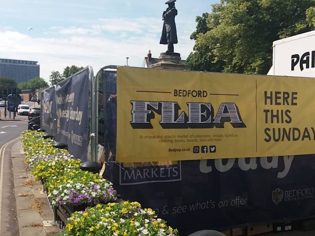 Bedford Flea