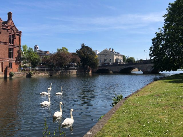 The River Great Ouse, Bedford: View of the Court Houses and Town Bridge from St. Mary's Gardens.