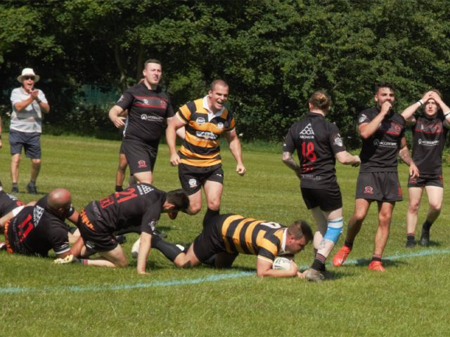 Bedford Tigers secure fourth after thrilling Silverbacks draw