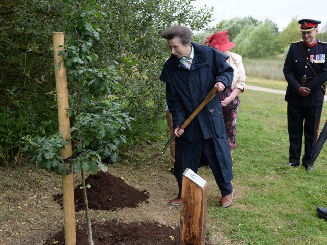 Princess Anne Forest of Marston Vale Credit- June Essex
