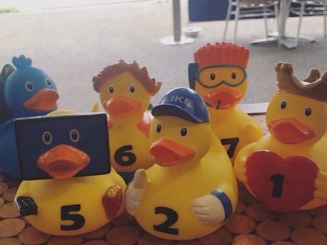 Longholme ducks