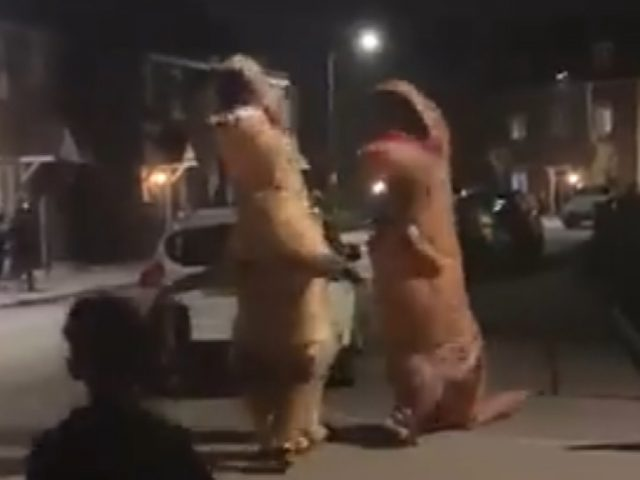 Wixams dinosaurs