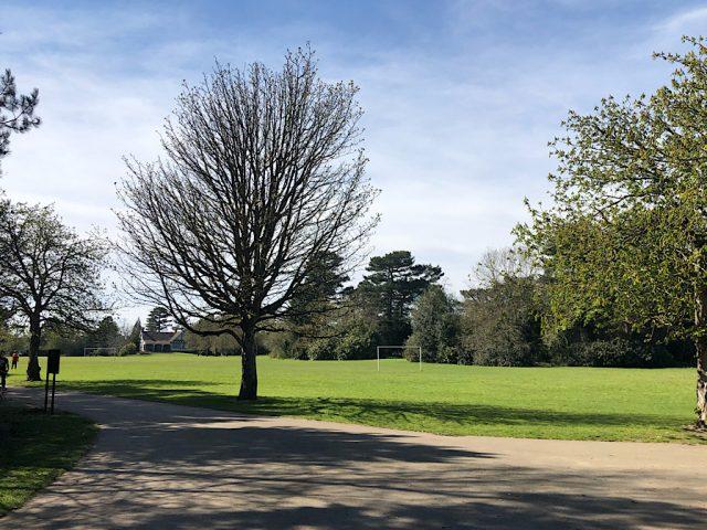 Bedford Park blue sky