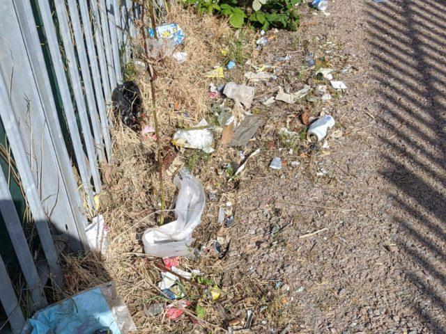 HWRC litter 1