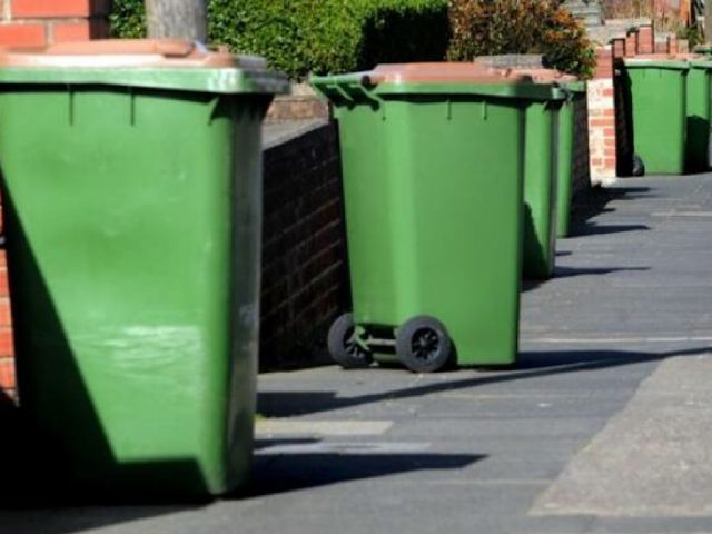 Green bin garden waste